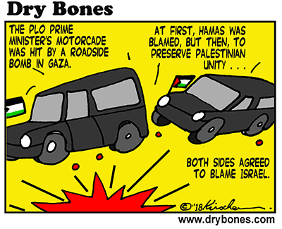 Dry Bones cartoon,Arabs, Hamas, PLO, infighting, Judea, Samaria, Gaza,