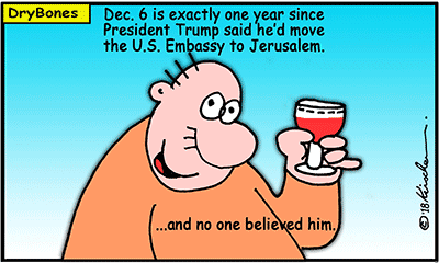Dry Bones cartoon, Jews, Israel,Jerusalem,Trump, Embassy,David Friedman,